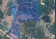 Cần bán 2.5ha đất trồng cây lâu năm, trong đó có 57m mặt đường liên xã Trúc Sơn đi Cư Knia, đủ điều kiện làm đất thổ cư.