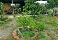 Bán nhà vườn có Xưởng KDC Long Thới, Huyện Nhà Bè, giá 7.1 tỷ, +84.943211439 Ms Hải
