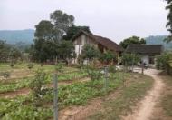Chính chủ cần bán đất tại Thôn Giao Ngay Xã Thống Nhất, T.P Lào Cai. ( Xã Gia Phú cũ mới xác nhập