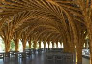 Mẫu nhà tre tại Sakana Hòa Bình,một công trình kiến trúc độc đáo,giá chỉ từ 3,7 tỷ