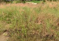 Đất phân lô đã xây móng 60m2 (4x15) Đường Thạnh Xuân 21, Phường Thạnh Xuân, Quận 12, Tp Hồ Chí Minh
