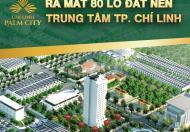 Dự án đất nền Chí Linh Palm Ciy Hải Dương dành cho nhà đầu tư