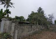 Chính chủ cần bán lô đất tại Xã Thái Long, Thành Phố Tuyên Quang.
