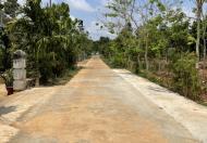 Chính chủ cần bán đất thôn 1 xã Hoà Thắng, TP. BMT cách sân bay 3km