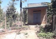 Bán Đất Tặng Nhà Cấp 4 Vị Trí Đẹp Tại Thị Trấn Ea Pốk – Huyện Cư M'gar – Tỉnh Đắk Lắk