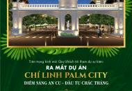 Chí Linh Paml City đầu tư là sinh lời .