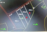 Bán nhanh lô đất 2000m2 vị trí đẹp tại Khánh Hòa