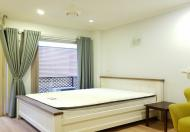 Cho thuê căn hộ 1PN giá rẻ tại Lạc Long Quân, Tây Hồ, 30m2, đầy đủ đồ, ban công thoáng