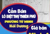 Cần bán lô biệt thự Thiên Phú phường Tứ Minh Hải Dương