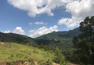Bán 40ha đất rừng sản xuất tại Cao Phong Hòa Bình.
