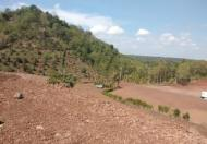 Bán 5300m2 đất đẹp mặt tiền đường liên xã TP Long Khánh