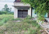 Chính chủ bán đất kèm nhà MT tại Tây Thuận, Tây Sơn, Bình Định.