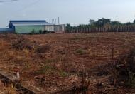 Bán đất thổ cư sổ sẵn gần KCN Đất Đỏ – BRVT mặt tiền đường trong khu dân cư, giá đầu tư Lh