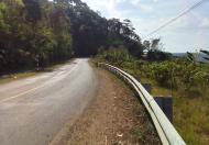 Chính Chủ Cần Bán Đất Xã Quảng Khê, Huyện Đắk Glong, Đắk Nông