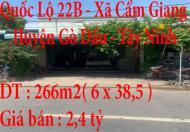 Chính chủ cần bán nhà mặt tiền kinh doanh đẹp QL 22b ,Cẩm Giang ,Gò Dầu ,Tây Ninh