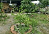 Bán Nhà vườn có sẵn xưởng KDC Long Thới, Nhà Bè 1000m2, giá 7,1 tỷ, Giá 7.1 tỷ +84.943211439 Ms Hải