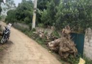 CHÍNH CHỦ CẦN BÁN ĐẤT THỔ CƯ Thôn 7, xã Ba Trại, huyện Ba Vì, TP Hà Nội