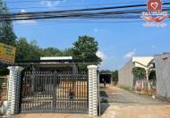 X40 Cho Thuê Nhà Xưởng Đồi 61 TRẢNG BOM