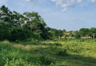 Bán đất Ba Vì hơn 10.000m2 vị trí vàng, siêu lợi nhuận gần Nam Từ Liêm 0969040000.