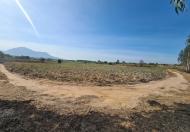 Bán đất mặt tiền 555 triệu, 33x150m, KP 7, thị trấn Tân Nghĩa, Hàm Tân, Bình Thuận - 0933644449