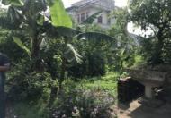 Chính chủ có lô đất cần bán tại Cẩm Yên-Thạch Thất Hà Nội