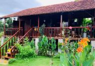 Cần bán lô đất tại Suối Thông B, xã Đạ Ròn - huyện Đơn Dương - Lâm Đồng, sổ riêng giá 1tỷ250triệu