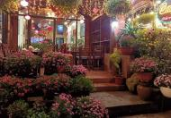 CỰC ĐỈNH! Khách sạn – Biệt thự ven hồ - Kinh doanh nhất – Oto đậu cả bãi