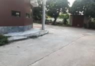 Bán 100m2 đất đấu giá Phương Cù, Thắng Lợi, Thường Tín gần nhà Văn Hoá