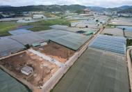 Bán đất đầu tư tại xã Ka Đô - huyện Đơn Dương - tỉnh Lâm Đồng, sổ riêng giá 495 triệu
