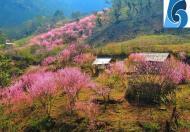 Bán đất nền Y Tý -SaPa2 khai thác du lịch bốn mùa,biên độ tăng cao