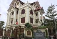 Bán biệt thự Nguyễn Văn Lộc, Làng Việt kiều Châu Âu, Mộ Lao, Hà Đông, diện tích 255m2, giá 26 tỷ