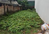 Đất thổ cư làng Đường Cố Thị Trấn Như Quỳnh Văn Lâm Hưng Yên LH 0982923665