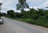 Bán 2000m đất trích đo đường xe công tránh nhau, rất phù hợp làm trang trại hay nhà xưởng, nhà vườn.